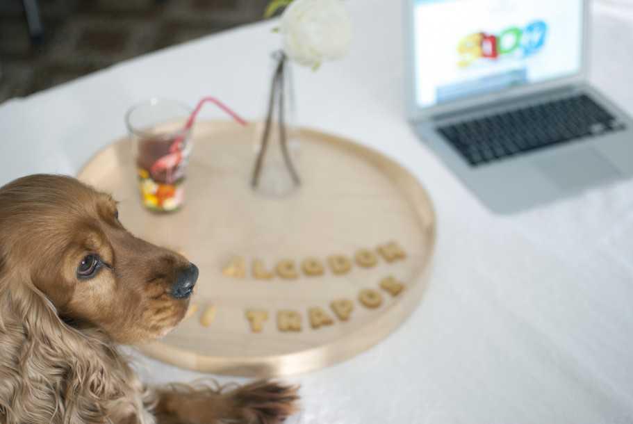 blogger con perro