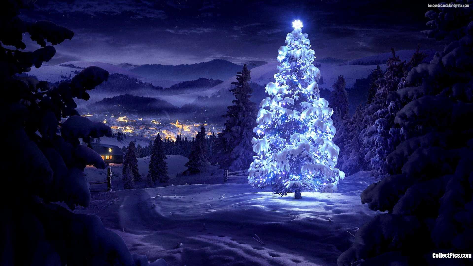 chistmas Navidad