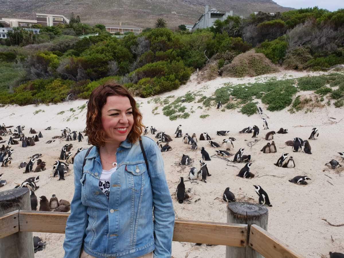 visita-pingüinos